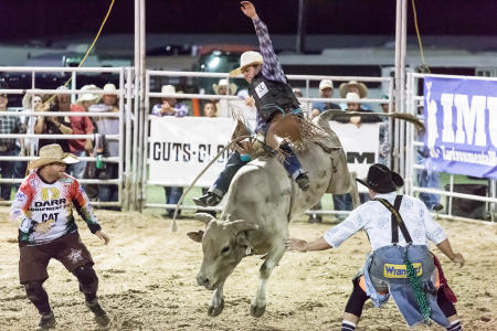 Washington County Fair Rodeo, Texas