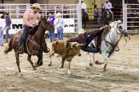 Washington County Fair and Rodeo.  Client: Brenham Chamber of Commerce.